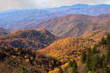 Poster Lavendel Fall on the Blue Ridge Parkway - Smoky Mountains, North Carolina