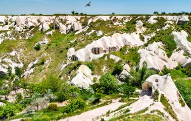 View of Pigeon Valley in Cappadocia, Turkey