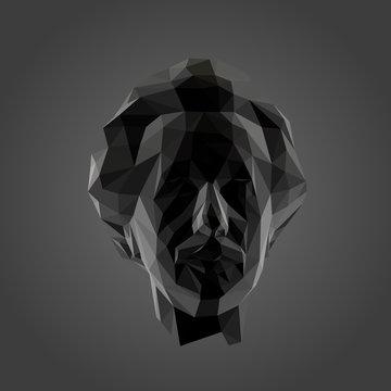 Ulm / Germany - Dec. 24, 2019: Albert Einstein in Black and White. Dark Low Poly Vector Greyscale Silhouette 3D Rendering.