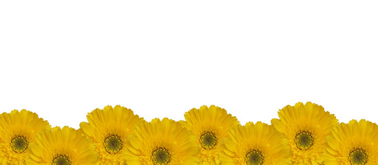Background image from a yellow flower