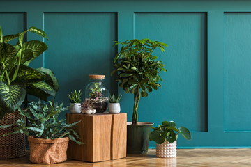 Door stickers Plant Modern composition of home garden filled a lot of beautiful plants, cacti, succulents, air plant in different design pots. Stylish botany interior. Green wall paneling. Template Home gardening concept
