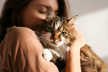 Portrait of young woman holding cute siberian cat with green eyes. Female hugging her cute long hair kitty. Background, copy space, close up. Adorable domestic pet concept. Wall mural