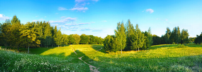 Wall Mural - Beautiful spring and summer landscape with forest trees, path and flowers on background of blue sky with clouds on sunny day. Panoramic view from the hill to nature in spring.