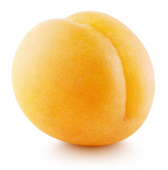 Single apricot or yellow plum isolated on white background. Apricot fruit with clipping path and shadow. Full depth of field.