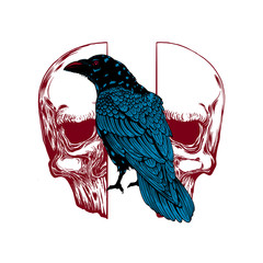 Autocollant pour porte Crâne aquarelle Crow on skull isolated on white. Hand drawn vector art. Sketch vector illustration. Vector vintage illustration. tattoo design.