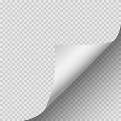Curled corner of paper with shadow on transparent background. Vector illustration.