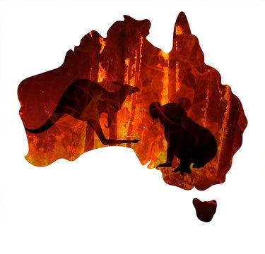 Fire in Australia. Map of australia burn. Animals killed in Fiers. Catastrophe and apocalypse. Pray for Australia. Bushfire crisis