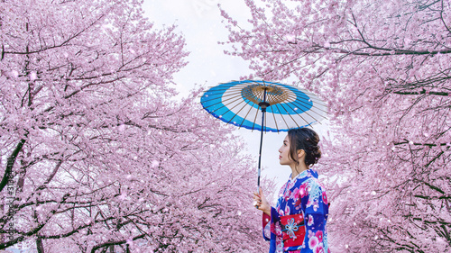 Wall mural Asian woman wearing japanese traditional kimono and cherry blossom in spring, Japan.