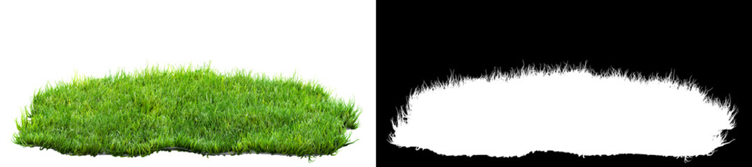 Keuken foto achterwand Gras green grass turf isolated on white background with alpha mask for easy isolation 3D illustration