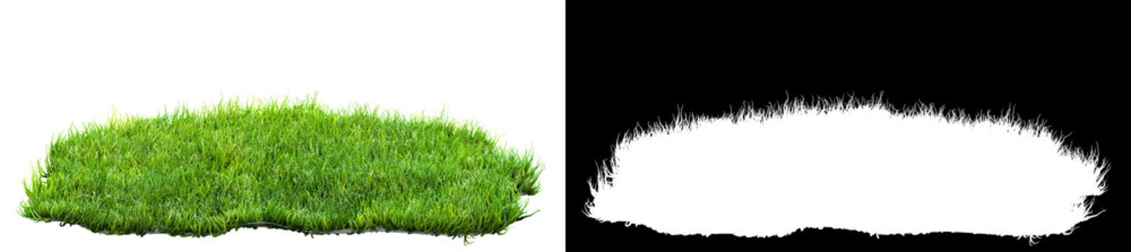 green grass turf isolated on white background with alpha mask for easy isolation 3D illustration