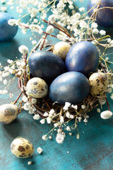 Blue easter eggs in a nest on a blue stone or slate background.