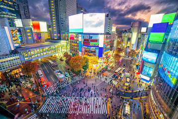 Fotomurales - Shibuya Crossing from top view at twilight in Tokyo