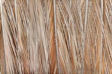 Palm braiding