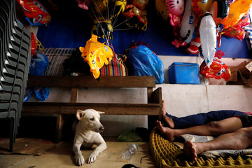 A dog is seen as people sleep at a stall in Manila