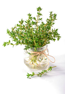 thyme in glass jar decorated with bow of twine isolated on white  background
