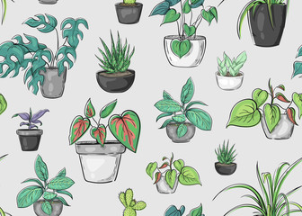 Seamless pattern with plants in pots