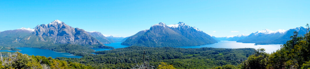 Forest view in Bariloche Argentina