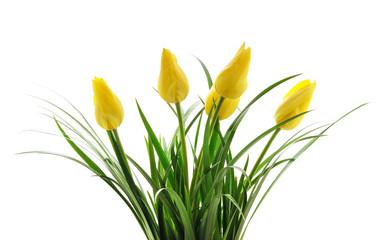 In de dag Tulp Bouquet yellow tulips.