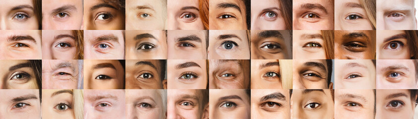 Collage of beautiful human eyes of different colors