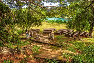 nature of siquijor on a sunny day, philippines