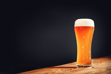 Long glass of fresh light beer with foam on wooden bar counter, dark background