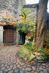 Wall Mural - courtyard in Tallinn old