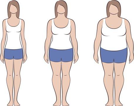 Female silhouette. Three various women body types