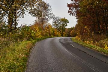 turning road, autumn season