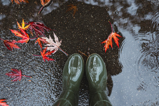 Feet in olive green rubber boots standing in a puddle with fallen leaves.