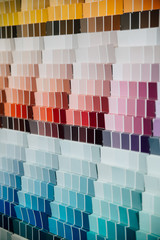 Color swatches on wall in hardware store