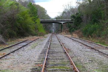 railroad train tracks bridge overpass abandoned rails