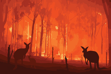 Fire in Australia. Forest fires with silhuette of wild animals kangaroo. Pray for Australia.