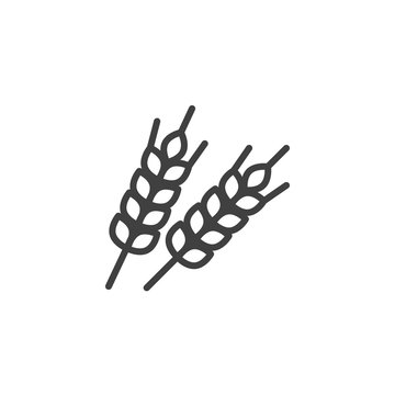 Wheat spikes line icon. linear style sign for mobile concept and web design. Ear of wheat outline vector icon. Agriculture symbol, logo illustration. Vector graphics