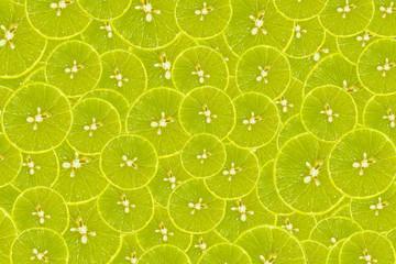 Fototapeta A lot of citrus lemons half sliced background obraz