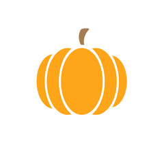 picture of pumpkin on a white background