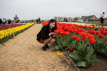 Beautiful brunette woman with tulips in field of flowers