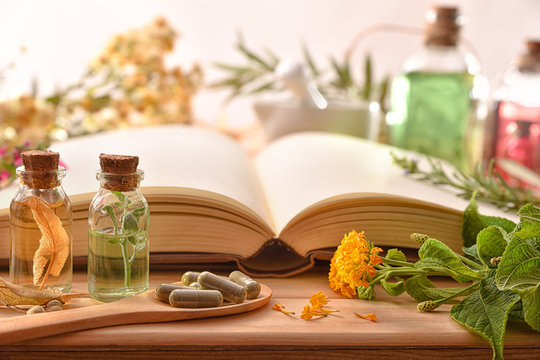 Traditional medicine with herbs and book on table front view