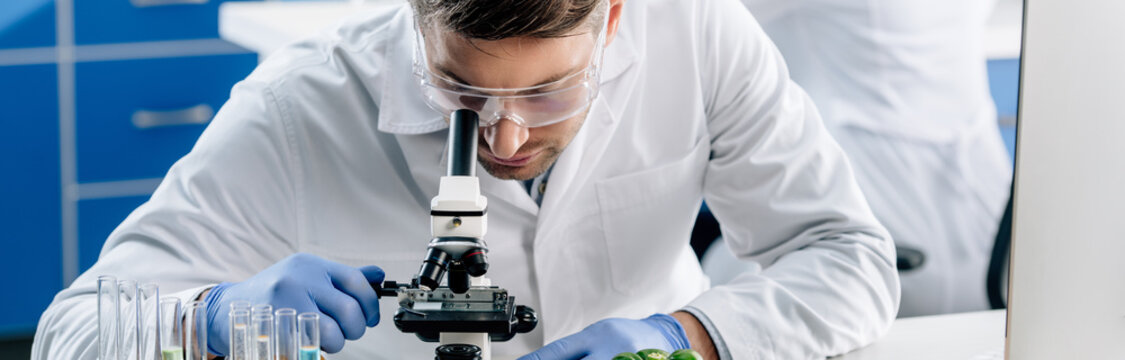 panoramic shot of molecular nutritionist using microscope in lab