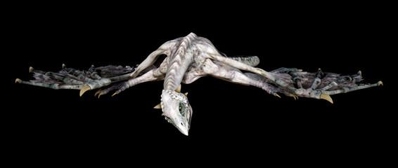 3D Rendering Fairy Tale Dragon on Black Fotobehang
