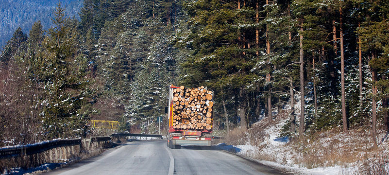 truck with wood logs driving from forest