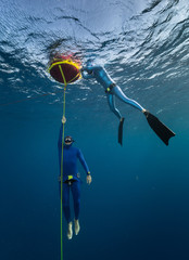 Wall Mural - Freediver ascends along the rope from the depth while another freediver relaxes on the buoy