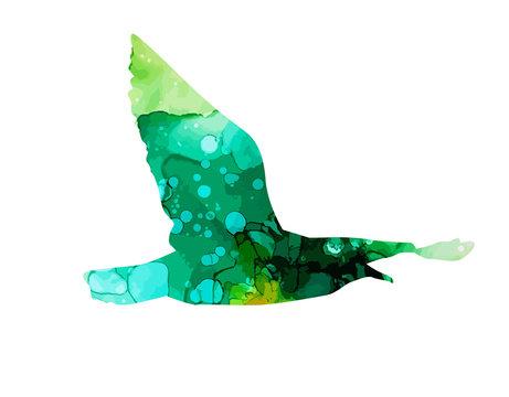 Watercolor multicolored seagull. Mixed media. Vector illustration