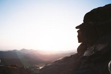 Spoed Foto op Canvas Chocoladebruin Summer landscape in mountains