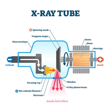 X ray tube vector illustration. Radiology scan equipment structural scheme.