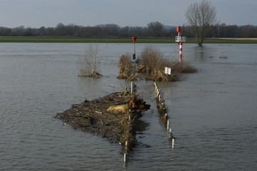 washed up rubbish on the banks and quays of flooded river IJssel near Doesburg