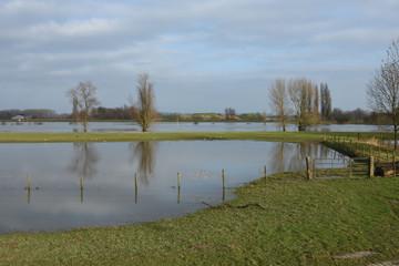meadow fence in flooded meadow near river IJssel