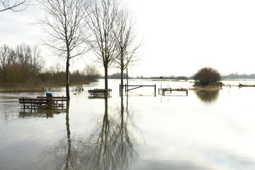 High water near river IJssel with fences in flooted meadows