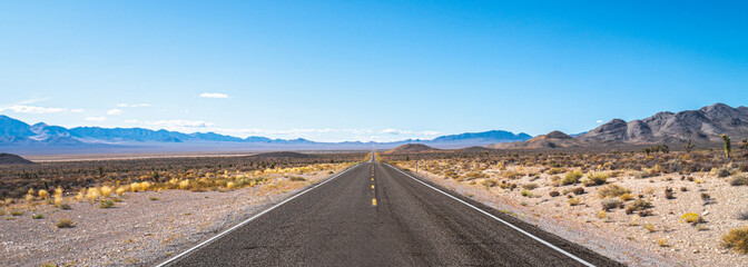 Endless road. Typical road in Nevada desert, USA.