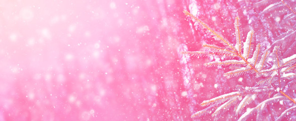 Fototapeten Rosa Lovey Frozen winter forest with snow covered trees
