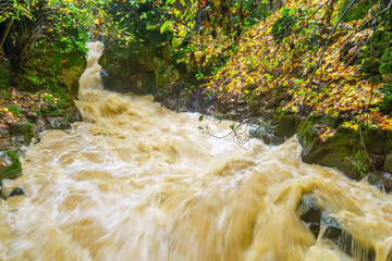 Strong winter waterflow in the Banias River